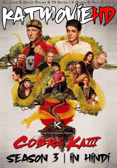 Cobra Kai (Season 3) Complete [Hindi DD 5.1] Dual Audio | S03 All Episodes | WEB-DL 1080p 720p/ 480p [NF TV Series]